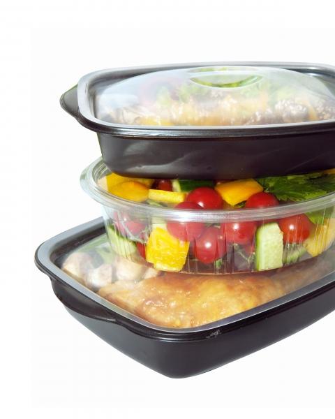 Plastic rigid container