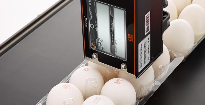U2 Egg